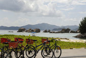 Bicycles by the beach — Stock Photo