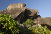 Rocks of Seychelles — Stock Photo