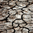 Large field of baked earth after a long drought — Stock Photo #2980555