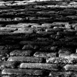 Cobblestone — Stock Photo #2981314