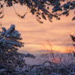 Winter sunrise lanscape - Stock Photo