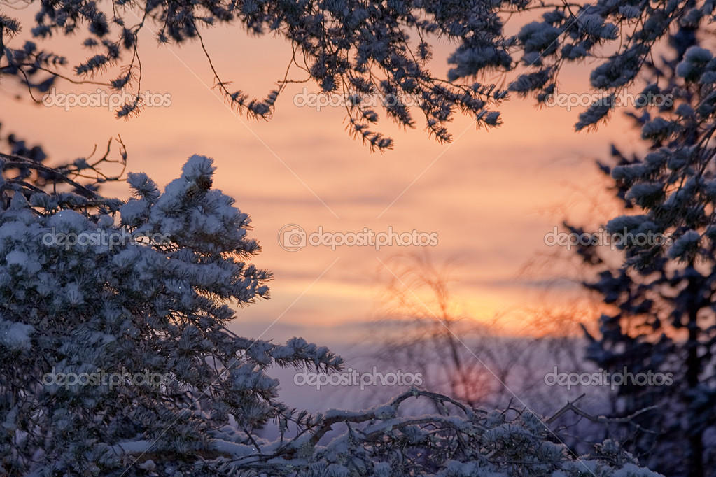 Winter sunrise lanscape / snow and sky / can use as frame with copy space for text — Stock Photo #3130886