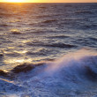 Stormy sea / Dawn / Waves and spray — Stock Photo
