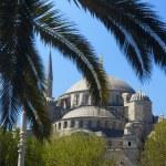 Blue mosque / Istanbul, Turkey — Stock Photo