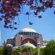 Stock Photo: Hagia Sophia in Istanbul, Turkey