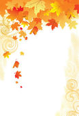 Autumn Background / gold leaves on white background — Stock Vector