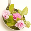 Ladle soup with flowers — Stock Photo