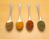 Spoon with different spices — Stock Photo