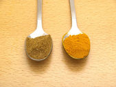 Spoons with turmeric and cumin — Stock Photo
