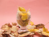 Glass with dry leaves — Stock Photo