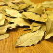 Dry bay leaves — Stock Photo #3082921