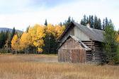 Log building — Foto Stock