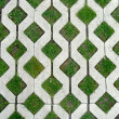 Stock Photo: Concrete pattern combined with grass