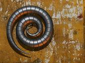 Techno metal steel Ionic swirl curl — Stock Photo