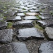 Wet from rain Flemish Belgian cobble stone - Stock Photo