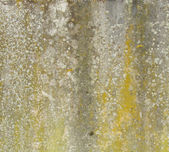 Worn dirty yellow gray concrete wall with spurs mould — Stock Photo
