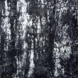Black and white damaged paint pattern — Stock Photo