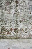 грязные изношенные окрашенные белые фабрика кирпичная стена с некоторыми мосс — Стоковое фото