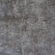 Old worn gray wall with cracking peeling paint — Stok fotoğraf