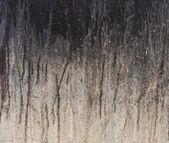 Black leak grunge drip pattern on gray white beige wall backgrou — Stock Photo