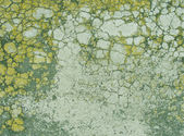 Green yellow grunge background with cracked paint — Photo