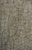 Worn dirty wall with heavily cracked paint — Stock Photo