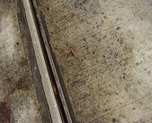 秋の都市の湿式金属路面電車の葉します。 — ストック写真