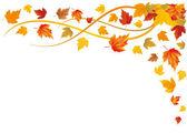 Autumn background, vector — Stock Vector