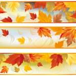 Autumn banners, vector — Stock Vector