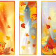Set Vertical Autumn banners, vector - Stock Vector