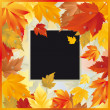 Autumn maple card, vector — Stock Vector