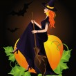 Halloween Witch and pumpkin, vector — Stock Vector