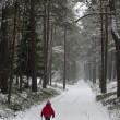 Stock Photo: Child with a sledge in forest in winter.