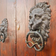 Door knockers on ancient portal. — Stock Photo