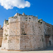 Conversano castle. Apulia. — Photo