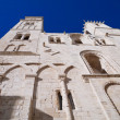 Cathedral of Giovinazzo. Apulia. — Foto de Stock