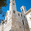 Cathedral of Giovinazzo. Apulia. — Stock Photo