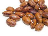 Borlotti beans. — Stock Photo
