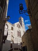 Cathedral of Giovinazzo. Apulia. — Stock Photo