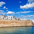 Ancient walls of Monopoli. Apulia. — Stock Photo