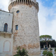 Conversano Castle. Apulia. — Stock Photo #3039456