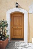 Woden Front door. — Stock Photo