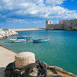 Royalty-Free Stock Photo: Panoramic view of Giovinazzo. Apulia.