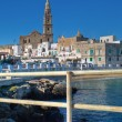 Panoramic view of Monopoli. Apulia. — Stock Photo