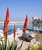 Panoramic view of Giovinazzo seaport. — Stock Photo