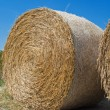 Royalty-Free Stock Photo: Rolling Haystack.