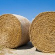 Royalty-Free Stock Photo: Rolling Haystack. Apulia.