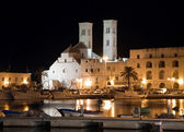 Molfetta Cathedral by night. Apulia. — Stock Photo