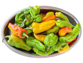 Green and Yellow peppers on silver tray. — Stock Photo