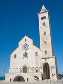 The Cathedral of Trani. Apulia. — Stockfoto